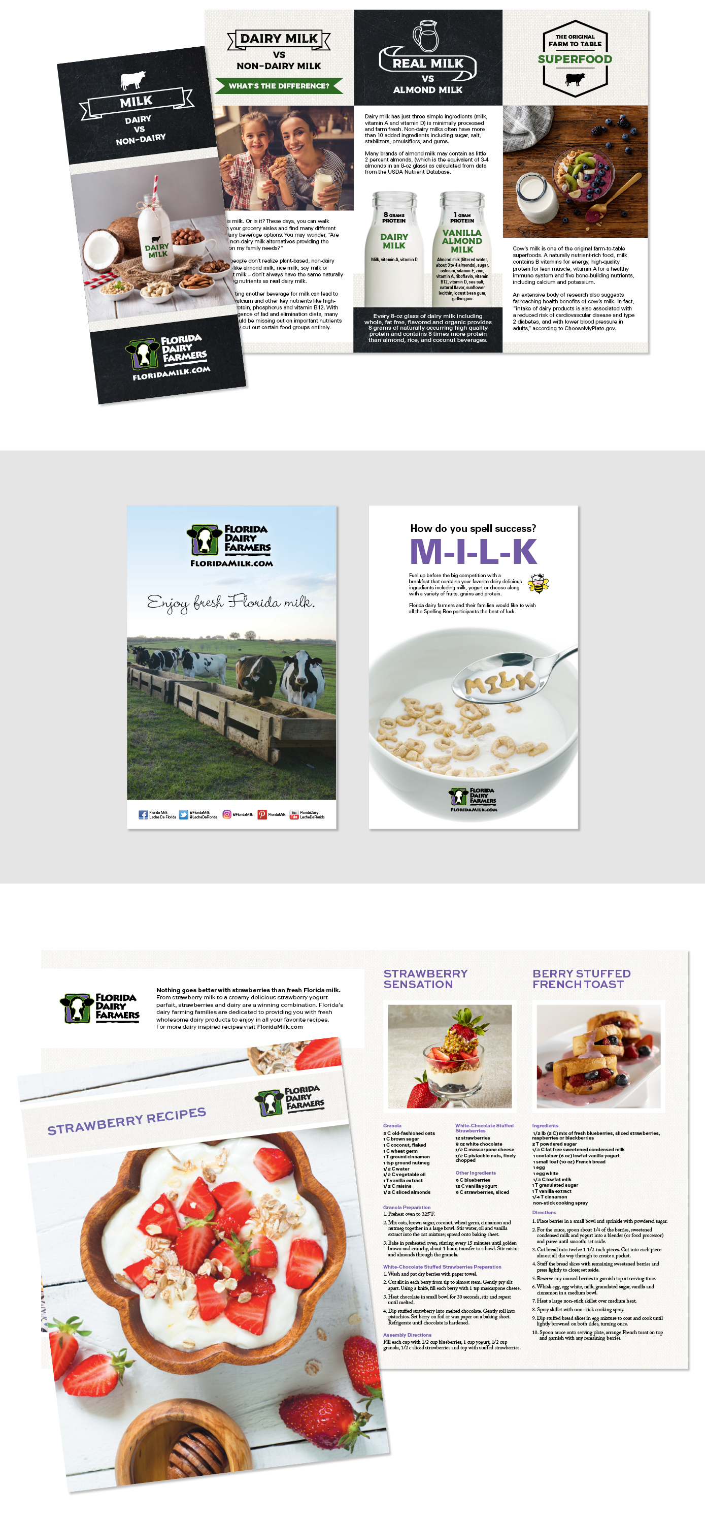 Marketing for the Florida Dairy Farmers by Retse Designs