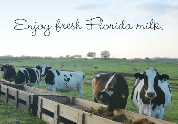 Florida Dairy Farmers